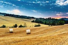 La Toscana - l'Italia fotografia stock libera da diritti