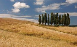 La Toscane Photos libres de droits