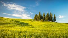 La Toscane au ressort Photos stock