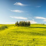 La Toscane au ressort Photographie stock