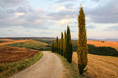 La Toscane en Italie Photos stock