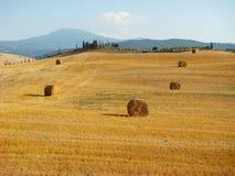 La Toscane, horizontal rural Photo stock