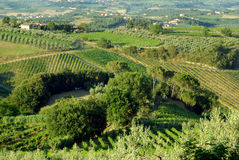 La Toscane, Italie Photo stock