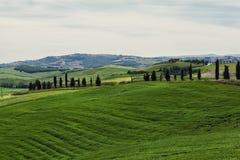 La Toscane, Italie Photo libre de droits