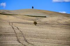 La Toscane - panorama, collines et pré de paysage Photo stock