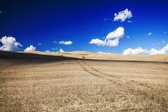 La Toscane - panorama, collines et pré de paysage Image stock