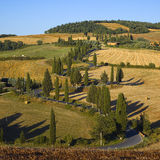 La Toscane - serpentine Image libre de droits
