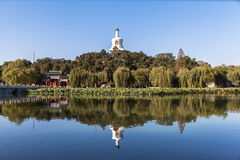 La tour blanche en parc de Beihai image stock