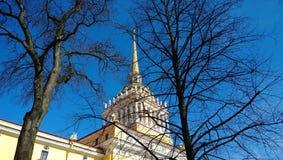 La tour d'Amirauté par les branches d'un arbre contre le ciel bleu clair à St Petersburg Photos stock