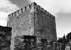 La tour de château en noir et blanc Photos stock