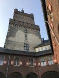 La tour de cygne photos libres de droits