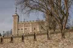 La tour de Londres, de murs et d'arbres Photo stock