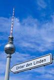 La tour de télévision de Berlin et tilleul du repaire d'Unter signent Image stock