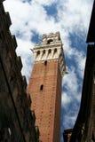 La tour du palais public de Sienne Photographie stock libre de droits
