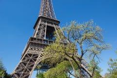 La tour eiffel. A symbol of Paris, Eiffel Tower Royalty Free Stock Photography