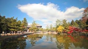 La tour en bois du temple d'À-JI en Nara Japan est le plus grand te clips vidéos
