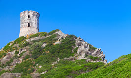La tour Parata. Ancient Genoese tower, Corsica Royalty Free Stock Photo