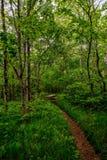La traccia appalachiana Fotografie Stock