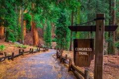 La traccia del congresso firma dentro il parco nazionale della sequoia fotografia stock