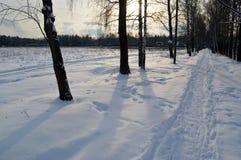 La traccia dell'inverno Immagine Stock