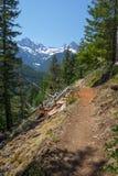La traccia della gola di Skagit, parco nazionale del nord delle cascate, WA, U.S.A. fotografia stock libera da diritti