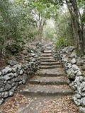 La traccia della scala, Saba Fotografia Stock