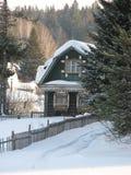 La traccia di inverno nella foresta siberiana Fotografie Stock