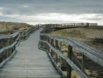 La traccia di legno del sentiero costiero conduce attraverso le dune di sabbia di Plum Island Immagini Stock