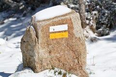 La traccia firma dentro la neve Fotografia Stock