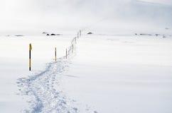 La traccia nella neve Fotografia Stock
