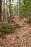 La traccia nelle montagne Fotografie Stock