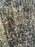 La tradition de mettre des beatas de bubble-gum et de cigarette sur un arbre près de la tombe de Jim Morrison chez Pere Lachaise  images stock