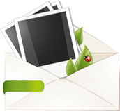 La trame blanc de photo avec le vert part dans l'enveloppe Photographie stock libre de droits