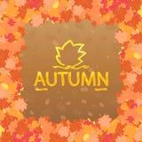 la trame décorative de fond d'automne d'isolement part du blanc d'enregistrement Photo stock