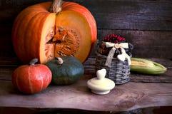La trame des cadeaux des potirons d'automne, du maïs, des lames d'automne, des tomates, de la canneberge rouge de baie et du rais Photographie stock
