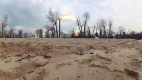 La transición de una playa arenosa a un cielo azul con las nubes y los pájaros de vuelo grandes Banco del río, primavera, verano  almacen de metraje de vídeo