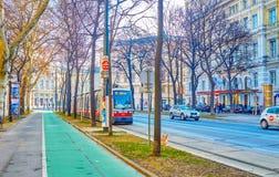La tranvía en Ringstrasse, Viena, Austria imagen de archivo