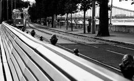 La tranvía está viniendo fotografía de archivo libre de regalías