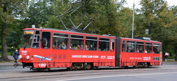 La tranvía de Tallinn Imágenes de archivo libres de regalías
