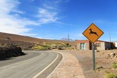 La travesía animal firma adentro el desierto Foto de archivo