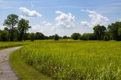 La trayectoria de la bobina curva a través del prado de la hierba y por los árboles verdes y sube sobre la colina toda debajo del foto de archivo