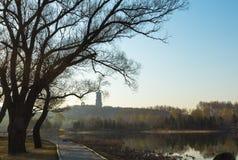 La trayectoria de la orilla del lago temprano por la mañana Foto de archivo libre de regalías