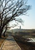 La trayectoria de la orilla del lago temprano por la mañana Fotografía de archivo libre de regalías