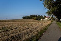La trayectoria de un paisaje del otoño con las manzanas caidas Imagenes de archivo