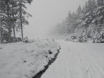 La trayectoria del campo a través nevó recientemente Fotos de archivo