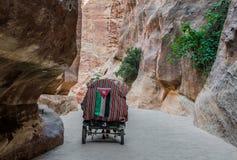 La trayectoria del siq en la ciudad nabatean de petra Jordania Imagen de archivo libre de regalías