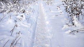 La trayectoria en el invierno en el aire abierto en el parque Camino nevado en la ciudad, rastros de botas en la nieve imagen de archivo