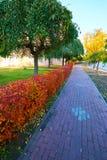 La trayectoria en otoño Fotos de archivo