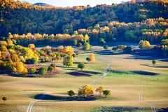 La trayectoria en la pradera del otoño Fotos de archivo