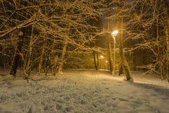 La trayectoria en un Forest Park se llenó de nieve Foto de archivo
